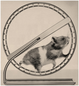 Hamster-Wheel01